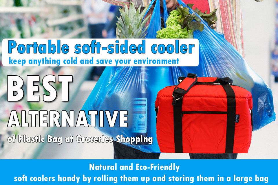 Portable soft sided coolers
