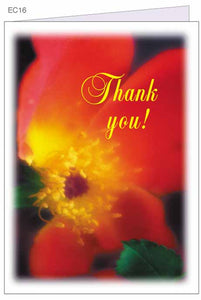 """Thank You!"" greeting card with envelope"