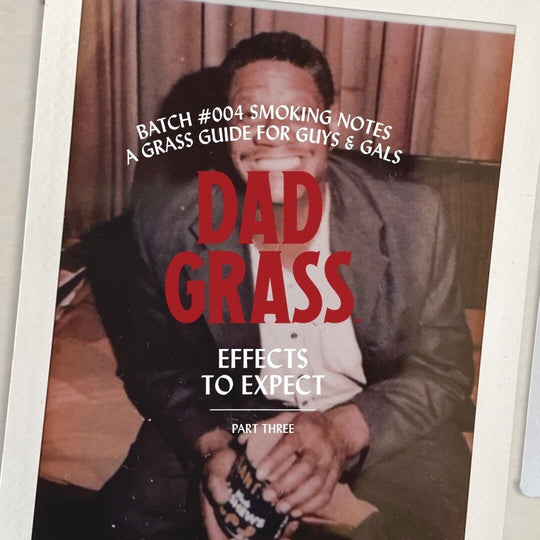 What Effects Can I Expect From Dad Grass CBD Pre Rolls?
