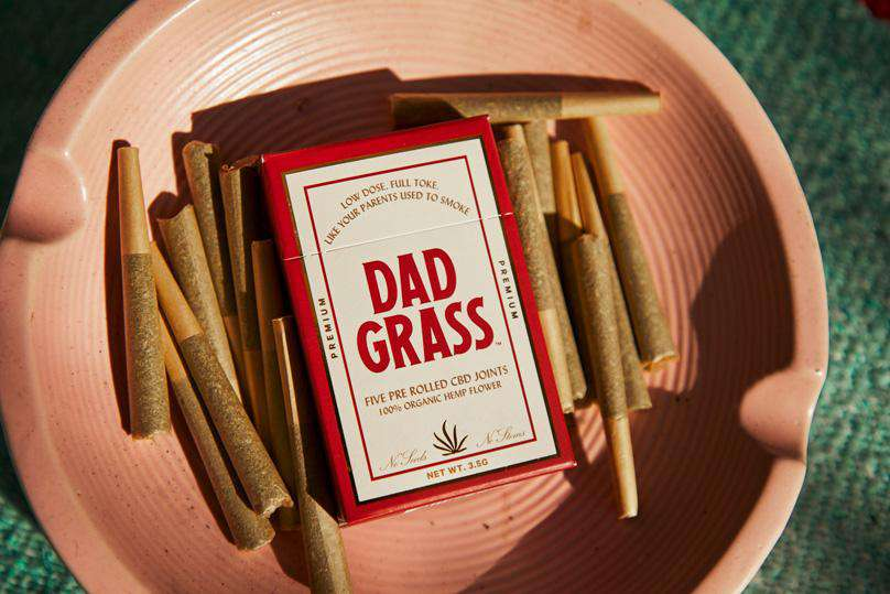 Dad Grass x Mark McNairy Dad Hat + 5 Pack Bundle