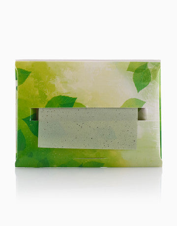 TeaFresh Organic Face Oil Blotting Paper