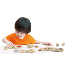 Learning Shapes wooden puzzle