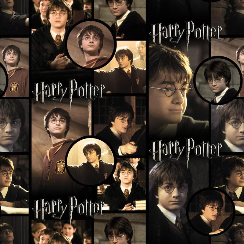Harry Potter By Himself Fabric by Camelot