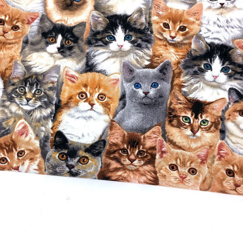 Elizabeth Studio - Adorable Pets - Cats Multi