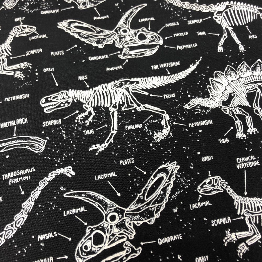 Glow-in-the-Dark Dinosaur Skeletons