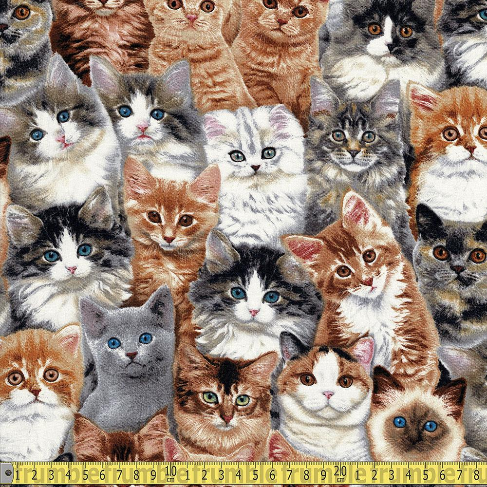 Elizabeth Studio - Adorable Pets - Cats Multi Sewing Fabric