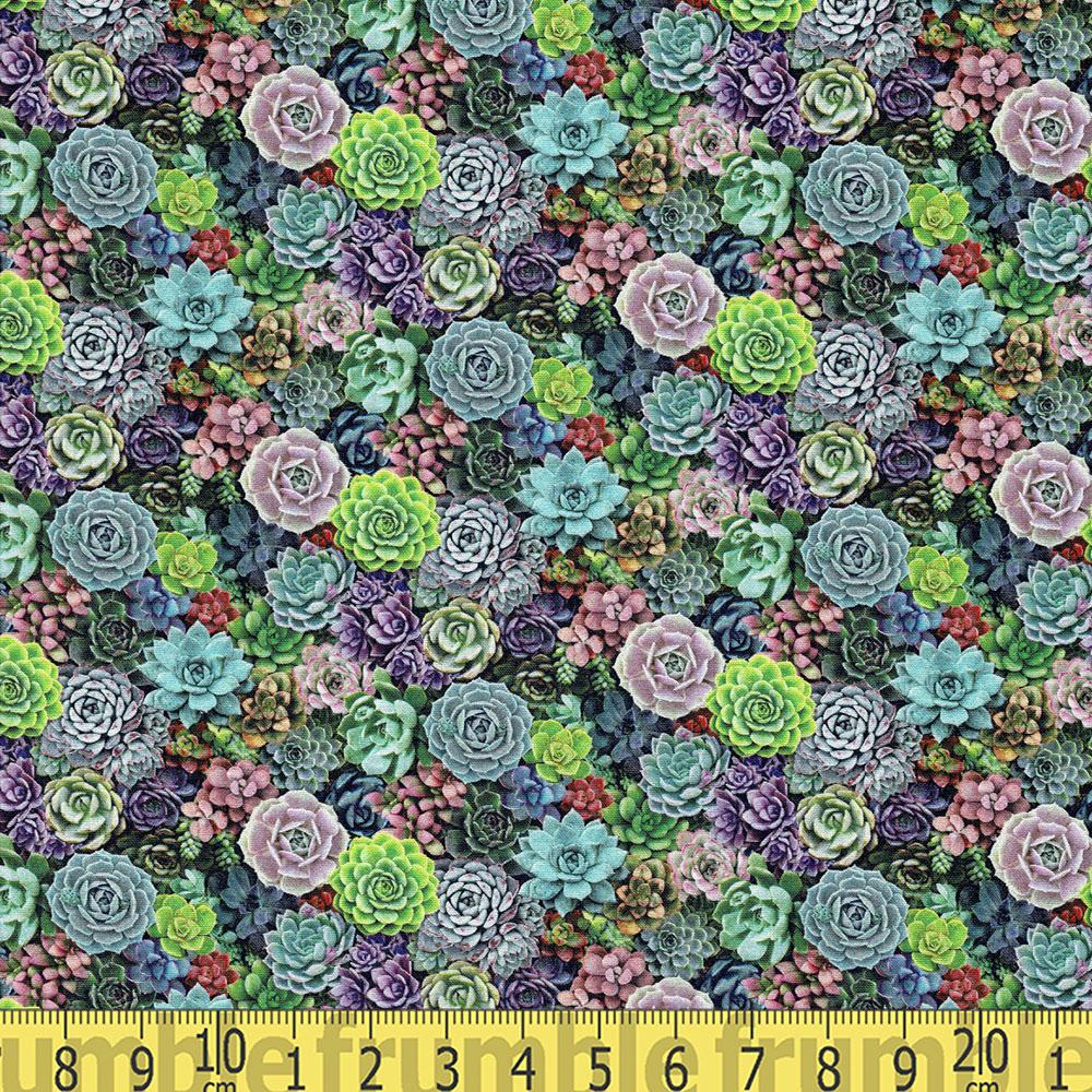 Petite Succulents Green Multi Fabric by Elizabeth Studio