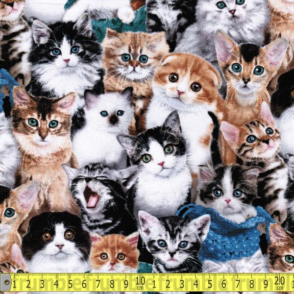 Cat Breeds Faces Multi - Frumble Fabrics