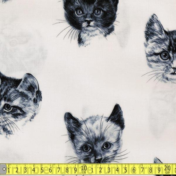 Laminated Fabric - Timeless Treasures Kittens Ivory Fabric by Various