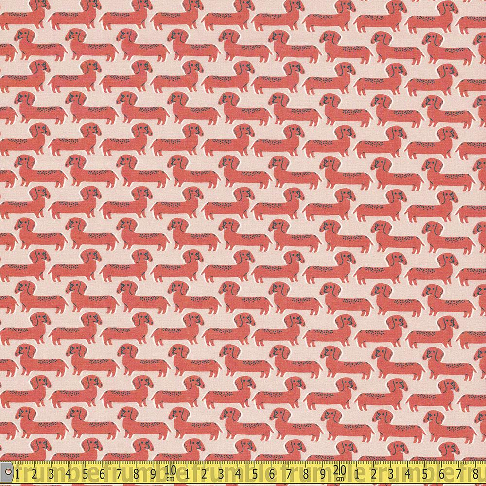 Paintbrush Studio - Best In Show - Sausage Dogs Coral Sewing Fabric