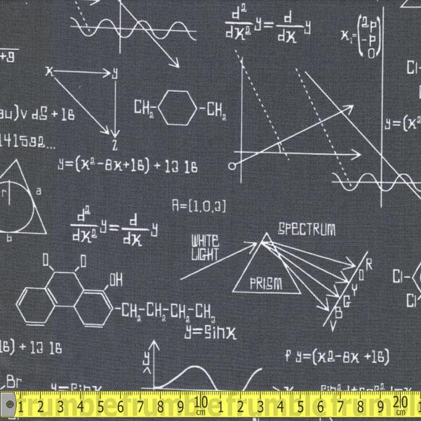 Science Fair Calculations Grey Fabric by Robert Kaufman