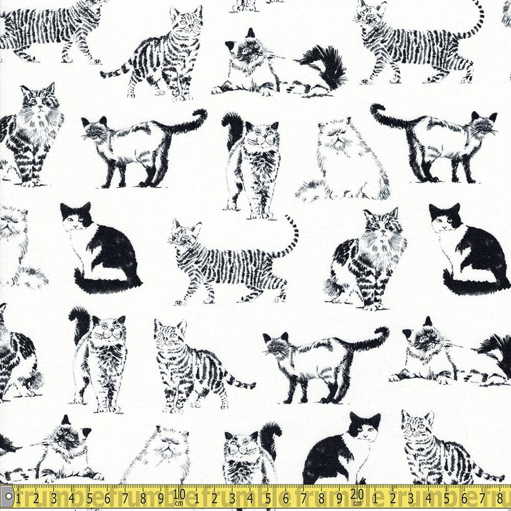 Timeless Treasures - Pet Sketch - Sketched Realistic Cats White Sewing Fabric