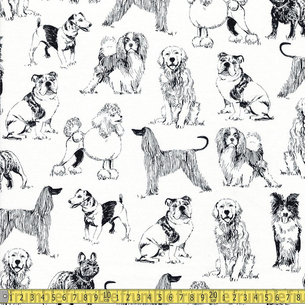 Timeless Treasures - Pet Sketch - Sketched Realistic Dogs White Sewing Fabric