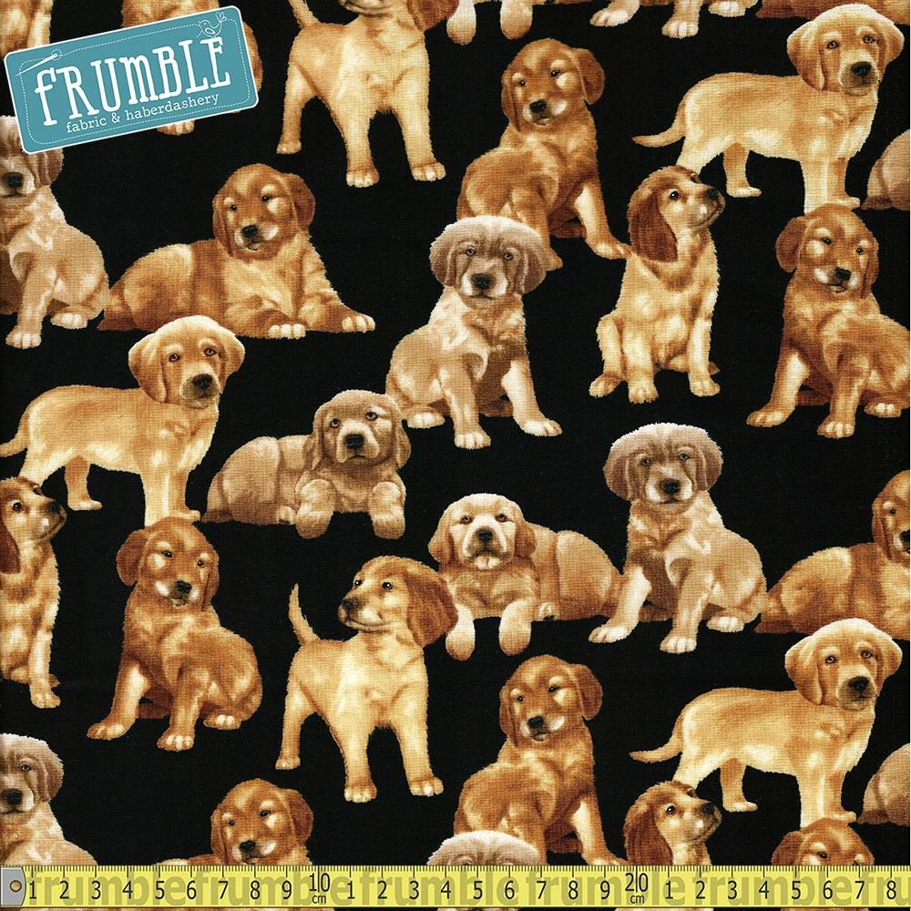 Labrador Puppies Black Fabric by Timeless Treasures