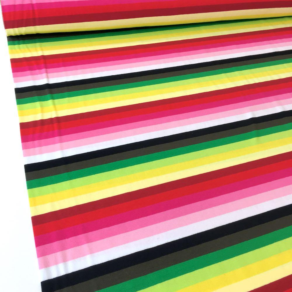 528362f59f0 Garden Rainbow Stripe Yarn Dyed Jersey Fabric Knit In Pinks and Greens
