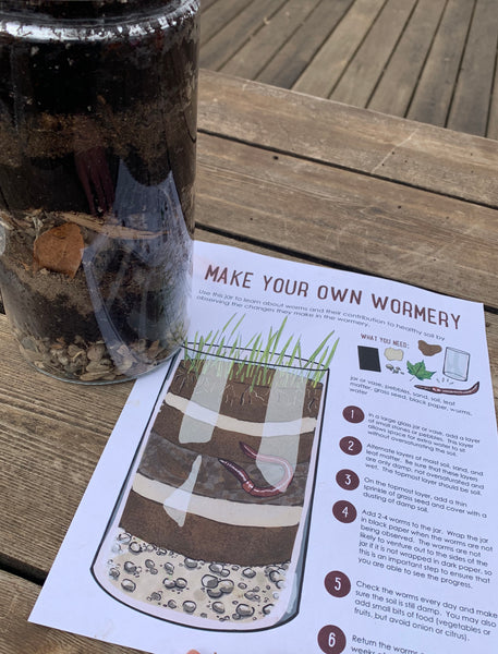 Create your own wormery and learn about worms and soil