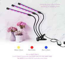 LED Grow Light USB Phyto Lamp Full Spectrum Fitolampy With Control For Plants Seedlings Flower Indoor Fitolamp Grow Box