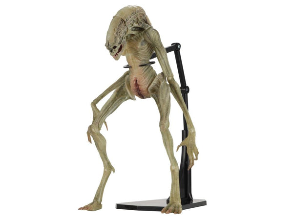 NECA - Alien: Resurrection - Deluxe Newborn Alien