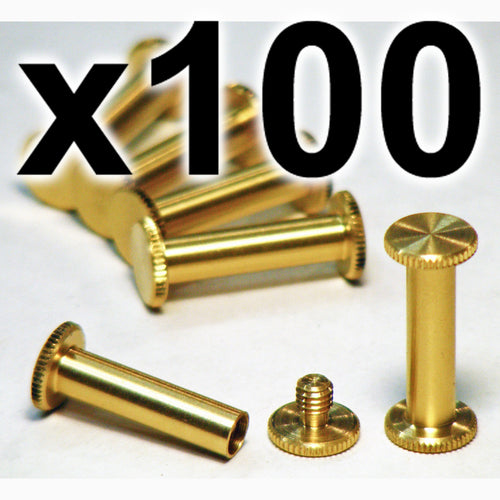BULK PACK of 100 x Brass Chicago interscrews post and screw set, 20mm (100 PACK)
