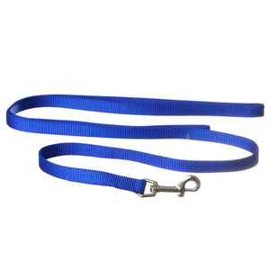 Coastal Pet Nylon Lead - Blue