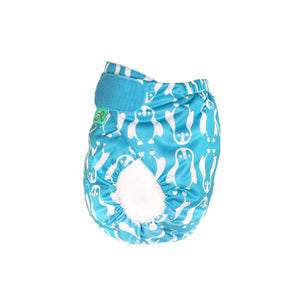 EasyFIt Star Reusable Nappy