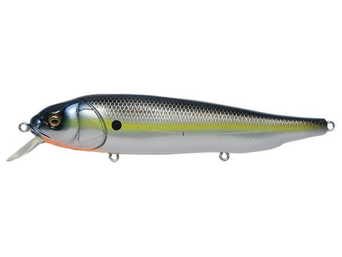 MEGABASS Lates Silent - 120 mm - BS Fishing