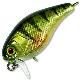 Leurre Jackall Chubby SSR 38 mm - BS Fishing