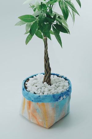 Money Tree by Hofmann Journal - Imaji Studio