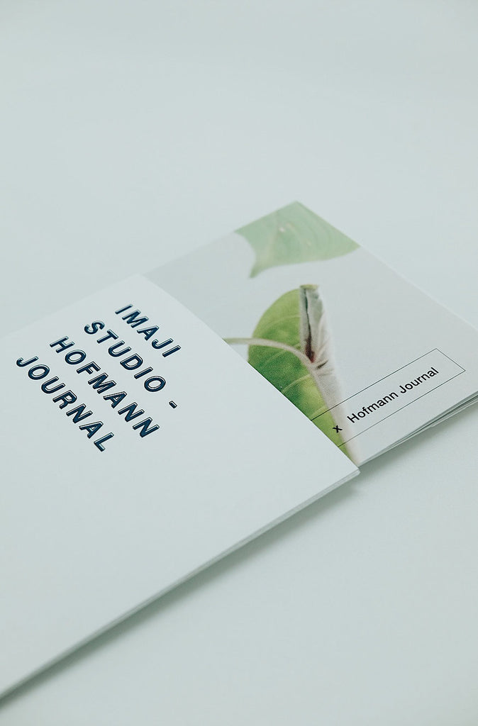 Philodendron Gloriosum by Hofmann Journal - Imaji Studio