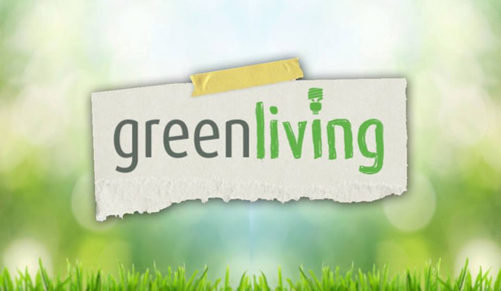 SEPTEMBER 17, 2019 MEDIA FEATURE : DRUID THINGS ON ANC'S GREEN LIVING