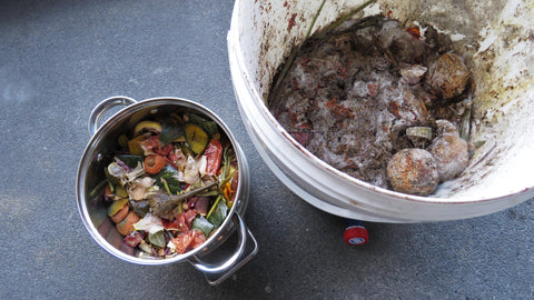 kitchen scraps and bokashi bucket