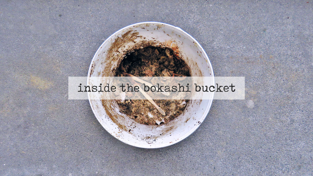 food waste inside a bokashi bucket