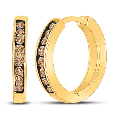 10kt Yellow Gold Womens Round Brown Diamond Hoop Earrings 1/4 Cttw