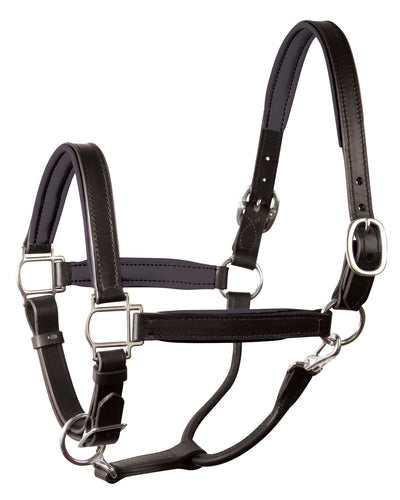 Classic Padded Leather Halter - Black/Black