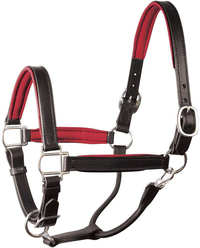 Classic Padded Leather Halter - Black/Red