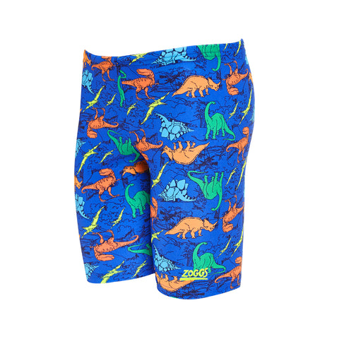 Boys Dino Land Mini Jammer Blue Multi