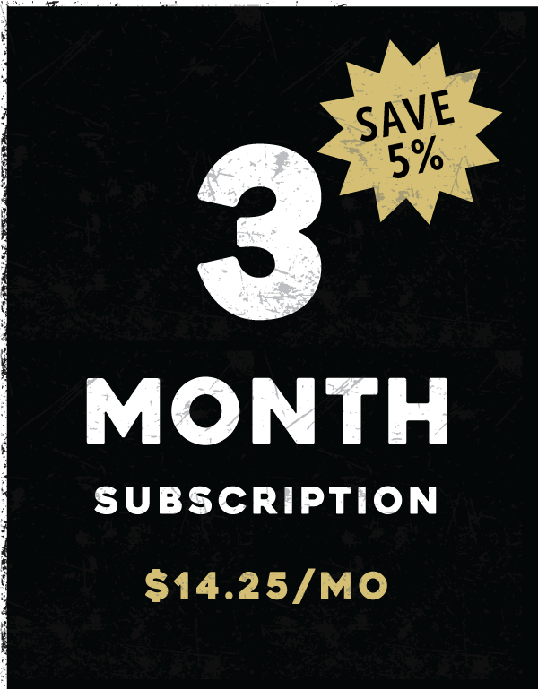 3-Month Subscription (Recurring)
