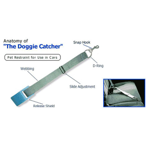 The Doggie Catcher