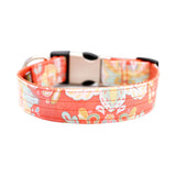 Orange Paisley Collar