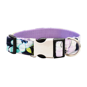 Purple Azure Collar