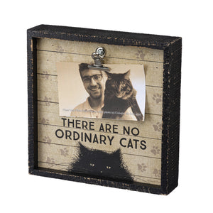 No Ordinary Cats Frame