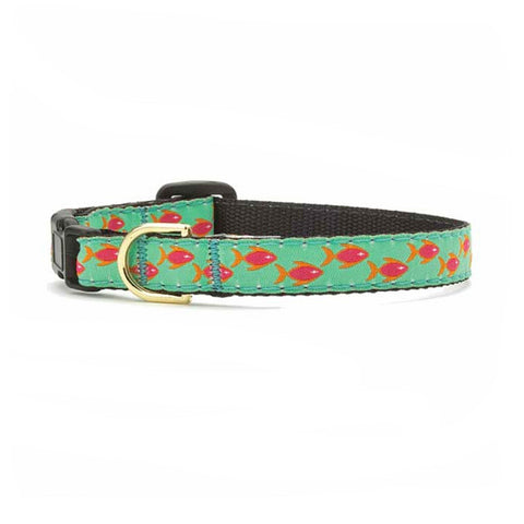 Tropical Fish Collar