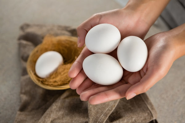 eggs in persons hand