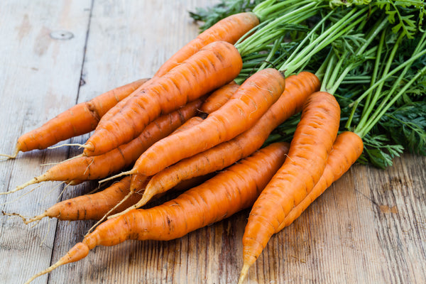 raw bunch of organic carrots