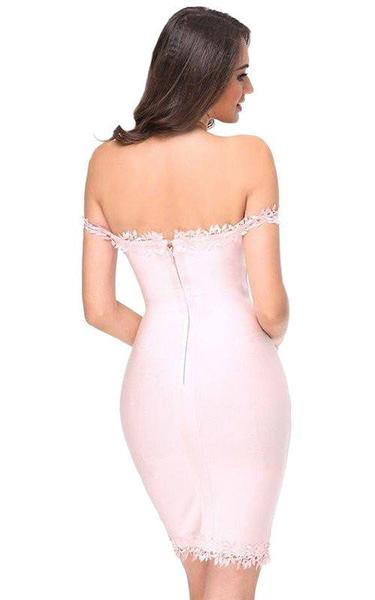 pink lace bodycon dress - back view on model