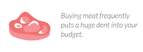 Buying meat frequently puts a huge dent into your budget.