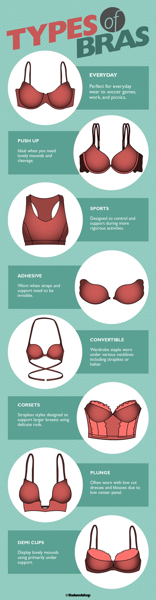 types of bra infographic