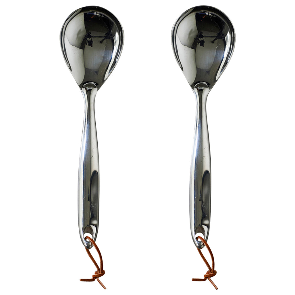 Stainless Steel Serving Spoon - Set of 2