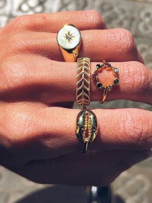 West Wind Rings Set