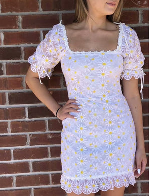 Double Layer Sunflower Embroidered Sexy White Mesh Dress